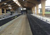 Stabulation vaches laitières pour une école